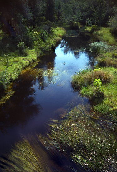 River View - Pinelands