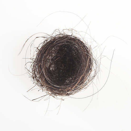 Horse Hair Nest #3