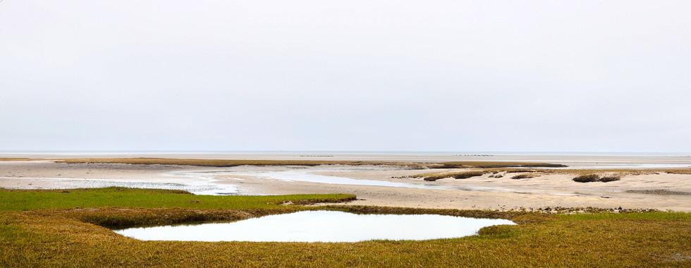 Tidal Pool-Cape Cod