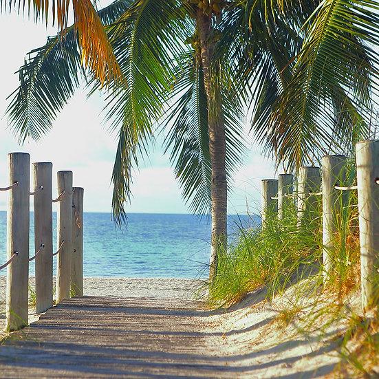 Key West Morning