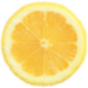 lemon rosemary icon (1).png