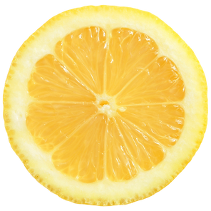 lemon rosemary icon (1).png
