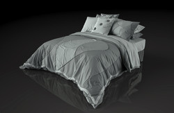 queen bed concept