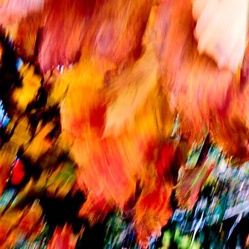 The Language of Fall