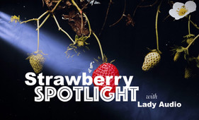 Strawberry Spotlight with Lady Audio