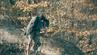 Neil Harvey video premiere on Pure Grain Audio