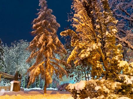Zăpada mieilor