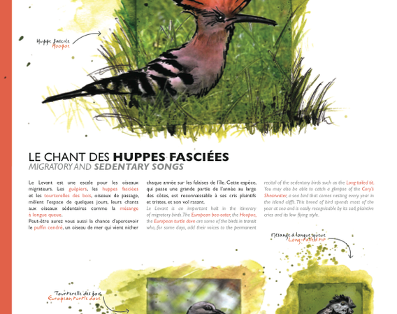 brochure_des_îles-01.png