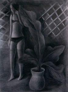 Shadow Plant