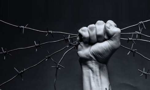 barbed-wire-in-hand-960x576.png
