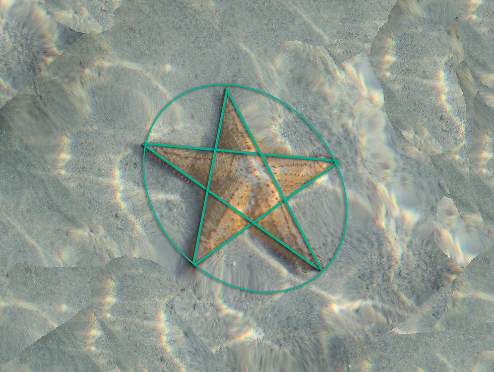 starfish_pentacle.jpg