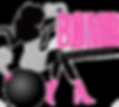 sbvh logo.png