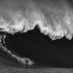 Al Mennie. Photograph by Wilson Ribeiro