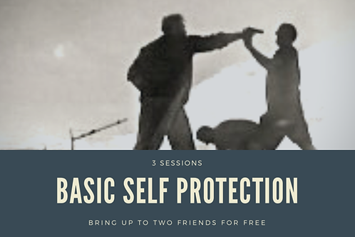 Basic Self Protection COURSE
