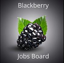 Blackberry Jobs Board.png