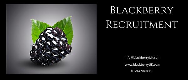 Recruitment Header copy 2.png