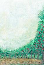 りんごの木.jpg
