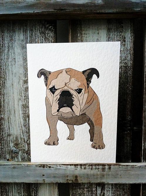 Bull dog Card