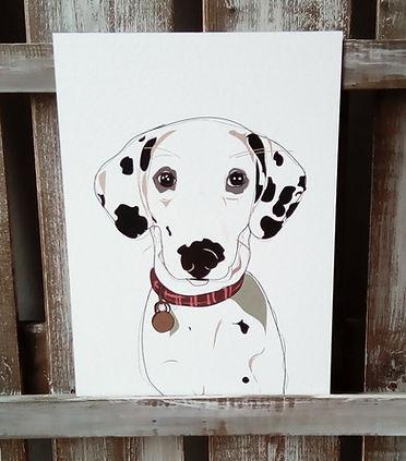 Karen Perry Illustrations Pet Portraits