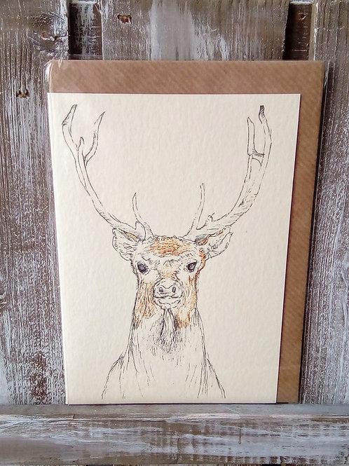 Stag Deer Card