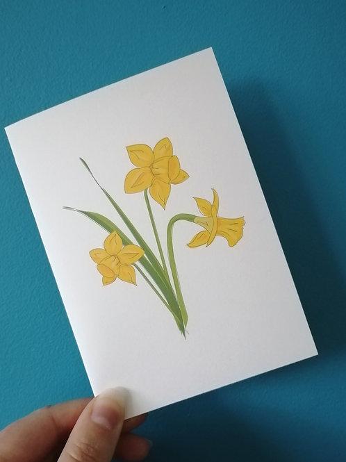 Daffodil Cards