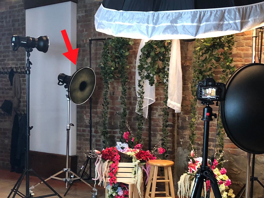 This is a photo of an floral editorial setup with fake vines and flowers atop of a stand. There is a red arrow above the rim light strobe, indicating the focal point on how it's lighting the model.