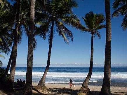 Insel La Réunion Strand Grande Anse