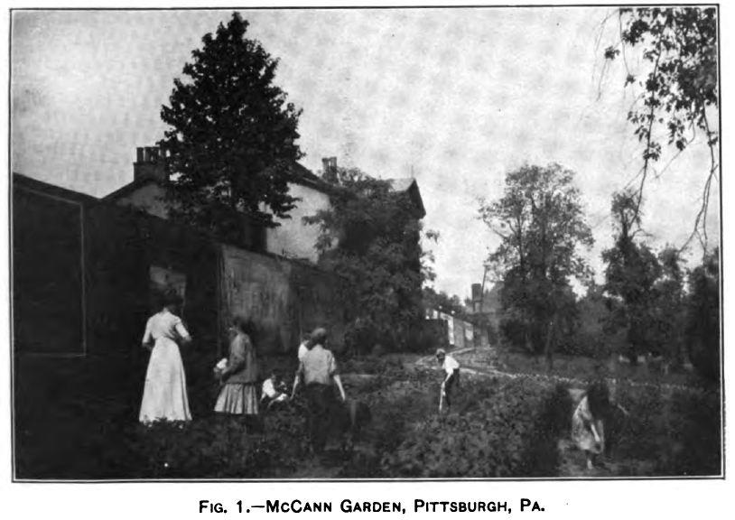 McCann Garden