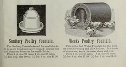 Poultry Fountains