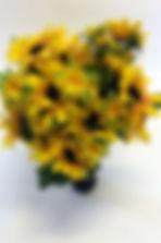 YellowSunflower_IMG_3270.jpg