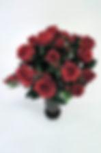 RedGardenRose_DSCN1875.jpg