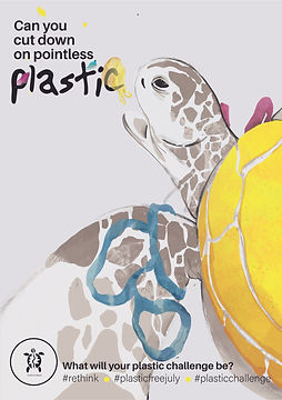 TurtleBags_Plasticfreejuly_poster_source