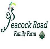 Limelight works with Peacock Road Farm for a perfect wedding