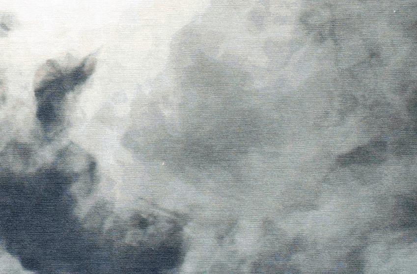 Cloud Nine close up LR.jpg