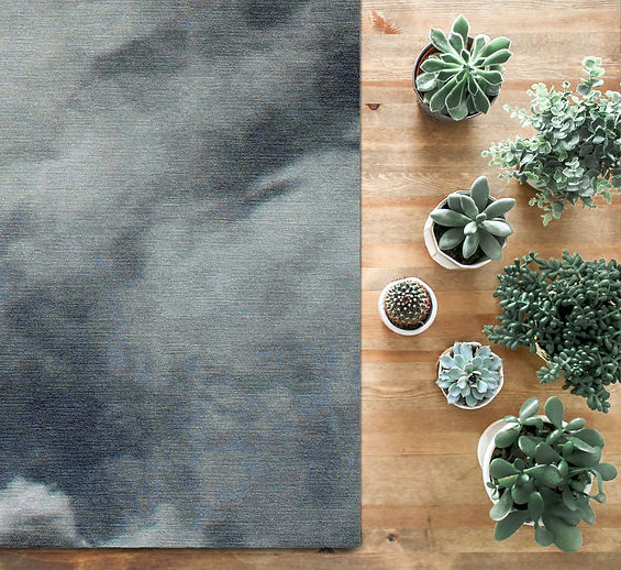 cloud nine with indoor plants LR.jpg