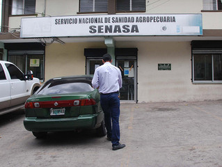 Nuevos valores en las tasas de servicios brindados por SENASA.