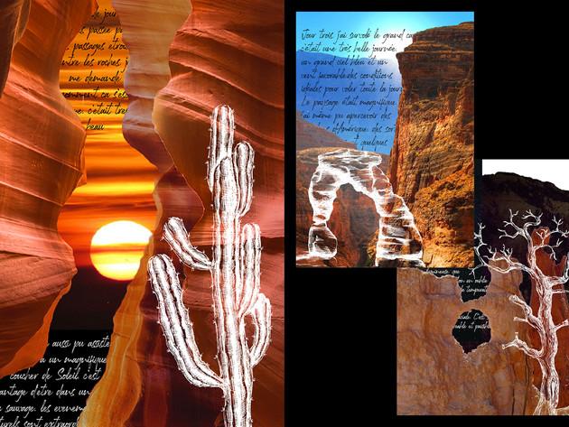 Projet de Célie : Les Canyons