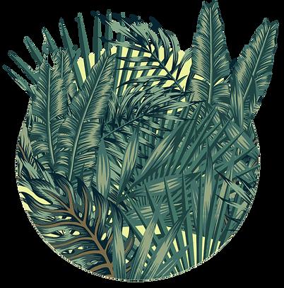 leaf ball.png