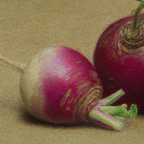 turnips_slice3.png