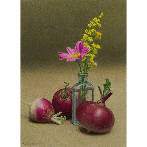 Purple Top Turnips and Cosmos, 2016