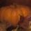 Thumbnail: Autumn Pumpkins, 2010
