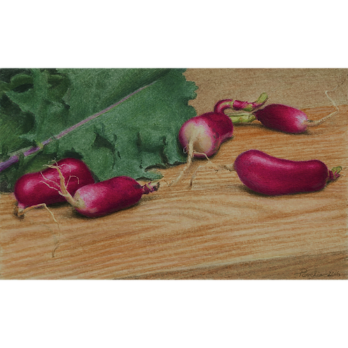 French Breakfast Radishes and Kale, 2016