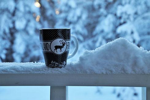 snow-3953603_1280.jpg