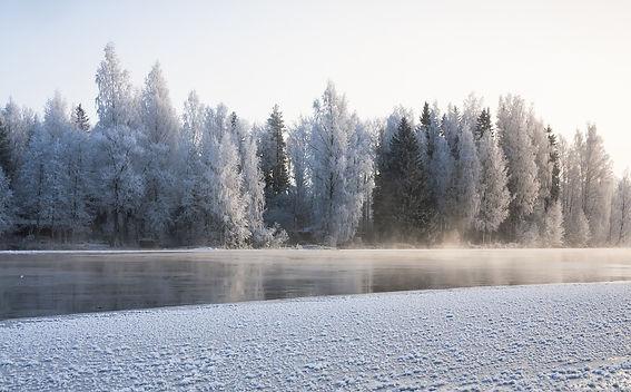winter-1374504_1280.jpg