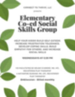Elementary Co-ed Social Skills Group (1)