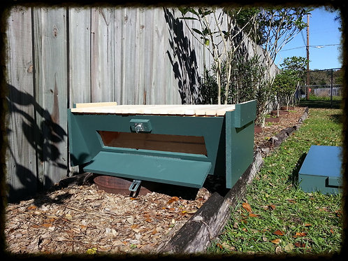 Economy Hive: Viewing Window Included