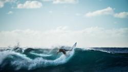 aqua-sea-sport-7862