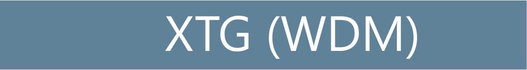 XTG (WDM) Infinera