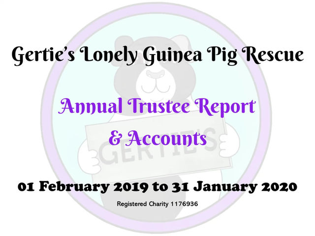 Gertie's Annual Accounts 2019/20