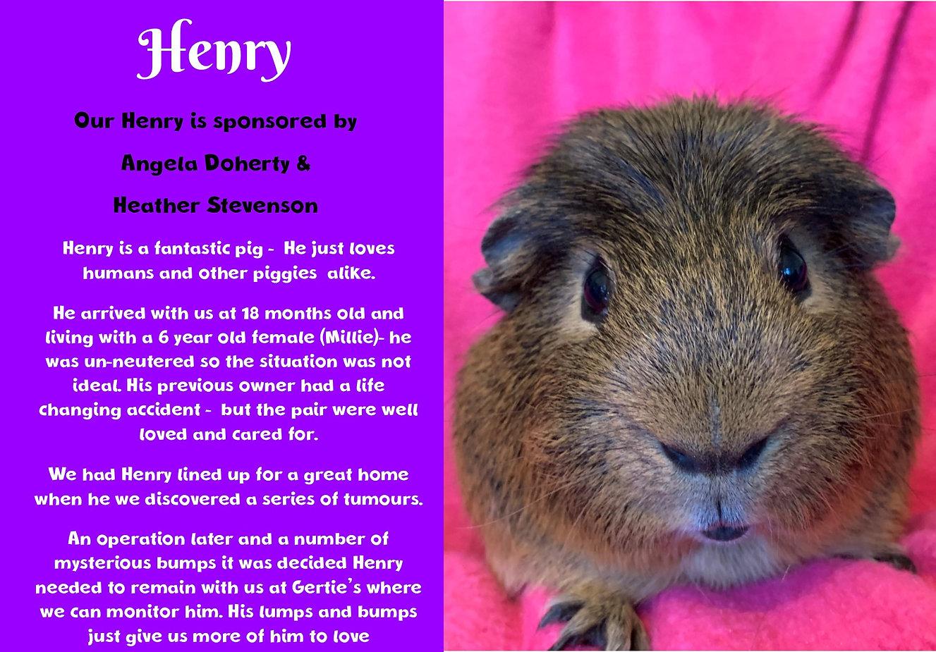 web henry.jpg